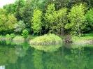 Naturpark Diemelsee_2